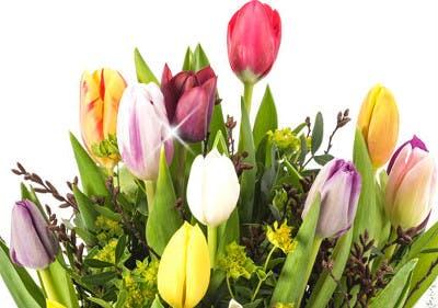 Blumensträuße zum Sparpreis bestellen
